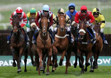 Horse racing  Minibus Hire with Driver London